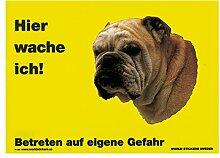 Warnschild Englische Bulldogge Hier wache ich gelb