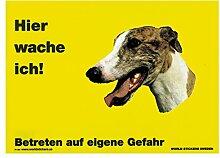 Warnschild Greyhound brindle Hier wache ich gelb