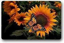 Waschbare schöne Sonnenblume mit Schmetterling