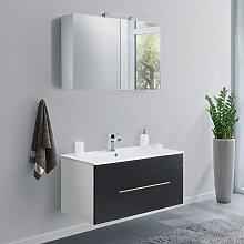 Waschtisch und Spiegelschrank in Schwarz Weiß