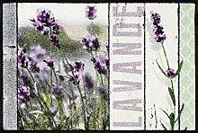 wash + dry 088004 Champs De Lavande Fußmatte, Acryl, violett, 50 x 75 x 0.7 cm