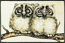 wash + dry 088257 Two Owls Fußmatte, Acryl, Beige, 50 x 75 x 0.7 cm