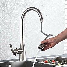 Wasserhahn für Küche, gebürstet, Wasserhahn