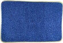 WCUI Fußmatte Die Tür-Fuß-Auflage der Tür-Teppich Hohe Elastizität Verdickende Teppich-Auflage Getting Started Fuß-Auflage Wählen Sie (Farbe : D, Größe : 40*60cm)