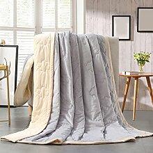 Wddwarmhome Herbst und Winter Warme Decke Einfarbig Decke Schlafzimmer Bettdecke Decke Wohnzimmer Freizeit Decke Polyester Material Wolldecke ( Farbe : Hellgrau , größe : 200*230cm )