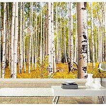 Weaeo Birkenbäume Wald Natur 3D Tapete