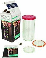 Weck Stangenglas Starter-Set (Glas zum
