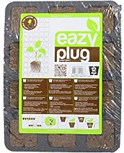 Weedness Eazy Plug Anzuchtset 12 STK. -