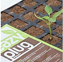 Weedness Eazy Plug Anzuchtset 24 STK. -