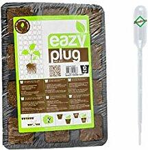 Weedness Eazy Plug Anzuchtset 77 STK. -