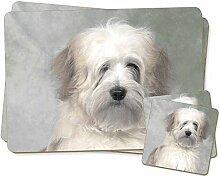 Weiß Tibetan Terrier Dog Zwillings