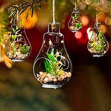 Weihnachten Lichterketten Weihnachtsbaum hängende