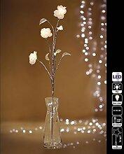 Weihnachts-Lichterkette, Lichterkette