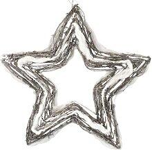 Weihnachtsdeko IP20 STAR 20xLED/2W/4,5V