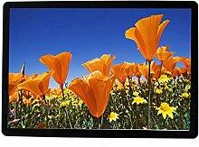 Weiß/schwarz ultradünne 15,2 Zoll HD digitaler