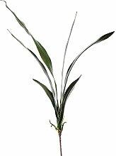 Weißen Dino gp034_ 01.jpg Cymbidium Pflanze, Acryl, Grün, 9x 63x 77cm