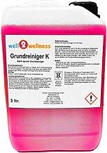 well2wellness Schwimmbadreiniger/Poolreiniger -