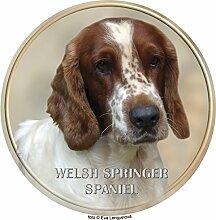 Welsh Springer Spaniel Aufkleber 25 cm
