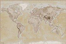 Weltkarte topografisch englisch Foto-Tapete 2-teilig - Fototapete Wallpaper 232x158cm. Beigelegt sind eine Packung Kleber und eine Klebeanleitung.