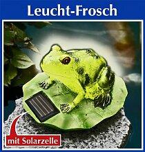 Wenko SOLAR Leucht FROSCH Gartendeko Solarfrosch Terrassendeko