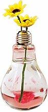 Westeng Glasvase Glühbirne Vase Glas Pflanze Topf