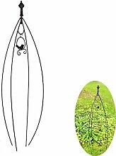 WGFGQX Kletterpflanzenrahmen,