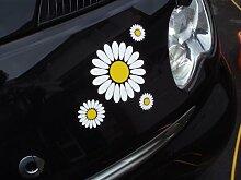 White Daisy Flower Auto Aufkleber
