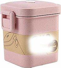 Wiederverwendbare Leakproof Lunch Box, 3 Schicht