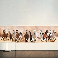 Wilde Pferde Wandbild Tier Panorama Foto-Tapete Kinder Schlafzimmer Haus Dekor Erhältlich in 8 Größen Groß Digital