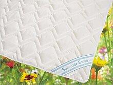 Wildseide Sommer Bettdecke Steppdecke Silk-Wash