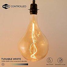 William & Watson WiFi Smart Edison LED-Lampe XXL,