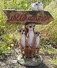 Willkommen Erdmännchen Rudel Trio Familie Figur