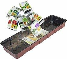 Windhager Anzucht Set - GROWYOUROWNHERBS& VEGGIES- Snackgemüse mit Küchenkräuter, 54 x 16 x 12 cm, 96881