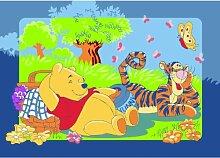 Winnie the Pooh mit Tigger beim Picknick Teppich