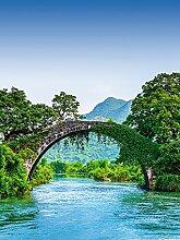 Wizard + Genius 5031-2V-1 Fototapete Bridge