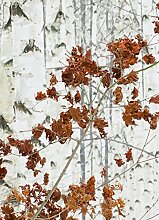 Wizard + Genius 5104-2P-1 Fototapete Birch Forest,