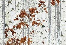 Wizard + Genius 5104-4V-1 Fototapete Birch Forest,
