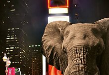 Wizard + Genius 5178-4P-1 Fototapete Elephant In