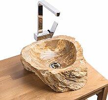 WOHNFREUDEN fossiles Holz Natur-Stein-Waschbecken 41x39x15 cm rund Bad Gäste WC