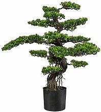 wohnfuehlidee Kunstpflanze Bonsai grün, im