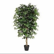 wohnfuehlidee Kunstpflanze Ficus Benjamini grün,
