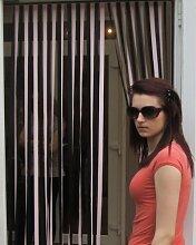 Wohnwagen-Türvorhang, Fliegengitter, Insektenschutz, Streifenvorhang -rosa Lakritze- 62cm brei