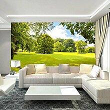 Wolipos 3D Tapete Wandbild Naturlandschaft Sofa