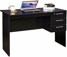 WOLTU® Schreibtisch TS59sz Computertisch