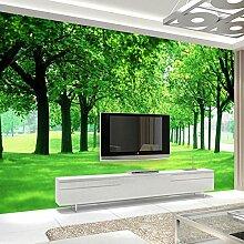Wongxl 3D Tv Hintergrundbild Wald Bäume