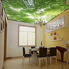 Wongxl Bambuswald Und Blauer Himmel 3D Wallpaper