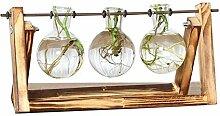 WOOAI Desktop Glas Pflanzer Glühbirne Vase mit