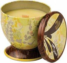 WoodWick 77630EU Zitrone Verbena dekorative duftkerze im Blechdose, Glas, gelb, 9.6 x 9.3 x 9.9 cm