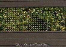WPC Sichtschutz, Glas Streifen hoch 180x30cm -