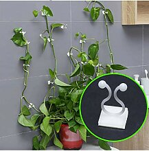 WSWWY Plant Climbing Wall Fixture Clips